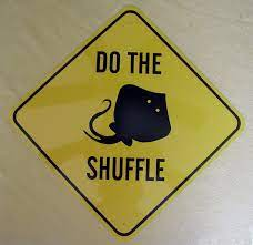 Do the Stingray Shuffle When Entering the Pacific waters of Panama